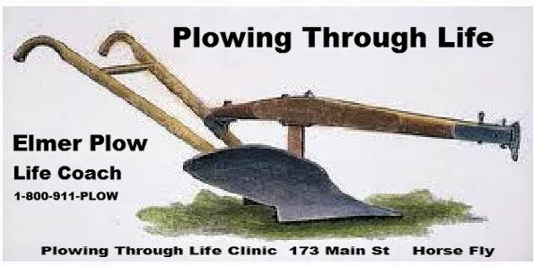 There is a NEW plow in town, Elmer Plow