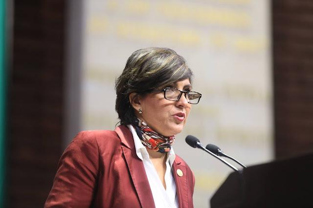 Mónica Almeida pide a CRE ampliar discusión para reducir emisiones de efecto invernadero en México