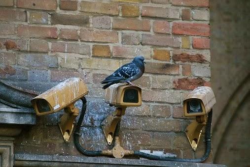 Bagaimana Cara Menggunakan CCTV Yang Baik Dan Benar