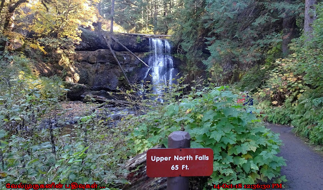 Upper North Falls in Silver Falls State Park