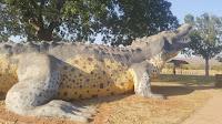 BIG Crocodile in Wyndham by Andrew Hickson   Australian BIG Things