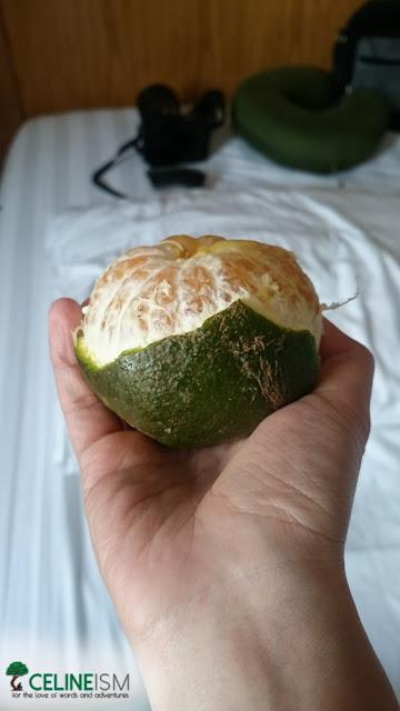 vietnamese king orange