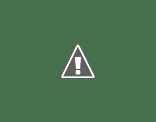 Blake Blossom Photo