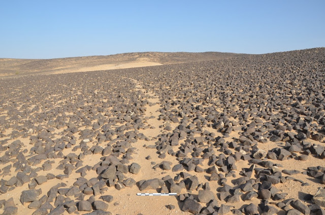 Ancient petroglyphs discovered in Jordan's Black Desert
