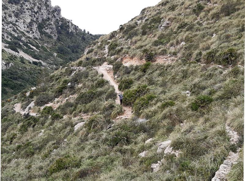 Sentiero per e dall'Eremo di Betlém a Maiorca
