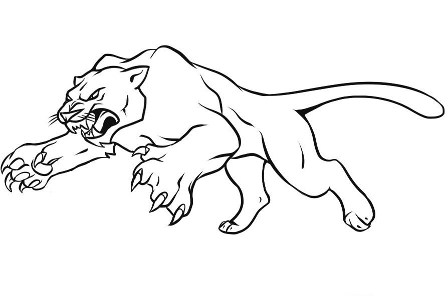 desenhos de panteras para colorir desenhos para colorir
