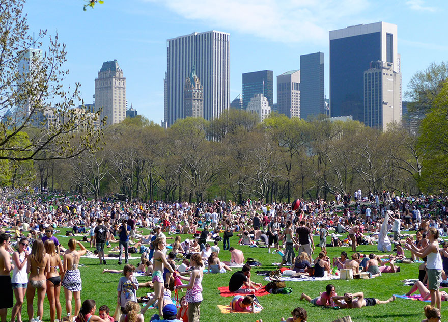 Travel Expectations Vs Reality (20+ Pics) - Walking In Sheep Meadow, In New York's Central Park, United States