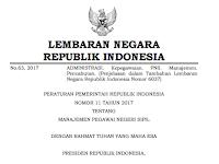 Download Peraturan Pemerintah (PP) Nomor 11 Tahun 2017 Tentang Persyaratan CPNS