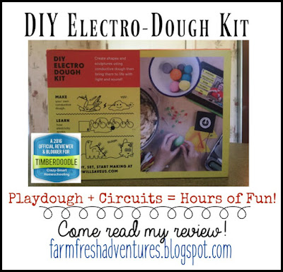 DIY Electro-Dough Kit: Product Review