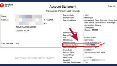 Bandhan Bank Account Statement