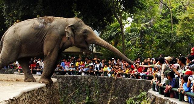 Lagi di Jakarta? Jangan Lupa Mampir ke 5 Destinasi Wisata Ini