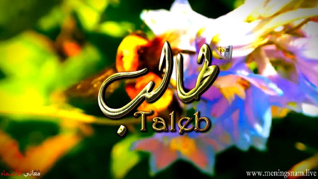 معنى اسم طالب وصفات حامل هذا الاسم Taleb