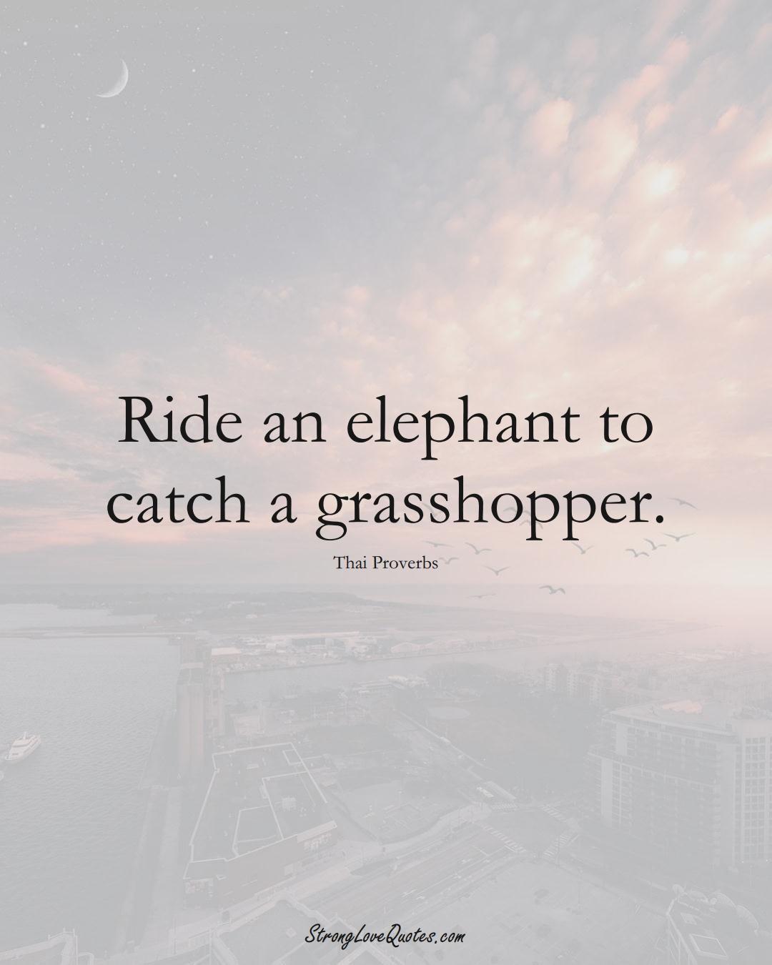 Ride an elephant to catch a grasshopper. (Thai Sayings);  #AsianSayings