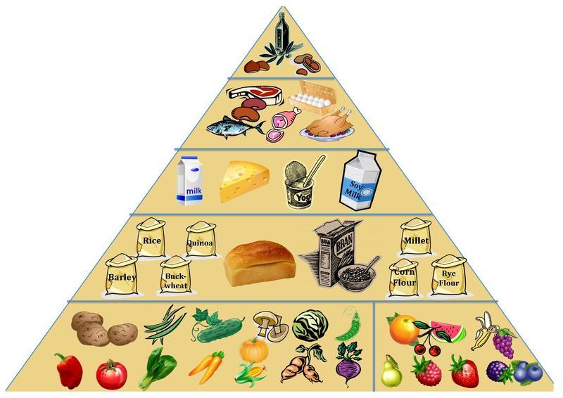 Health Food Pyramid Scheme