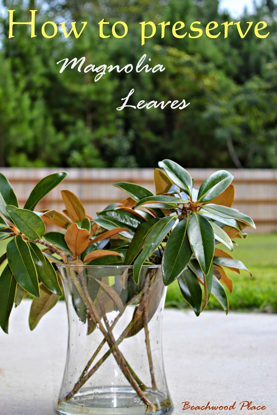 Magnolia Leaf Wreath: Beachwood Place: Ten Minute Fall Vase & DIY Magnolia Wreath