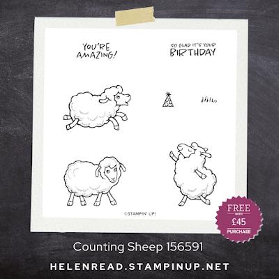 Counting Sheep Stampin' Up stamp set demonstrator UK