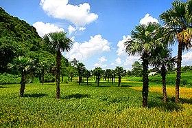 Cảnh đẹp tại Tuyên Quang
