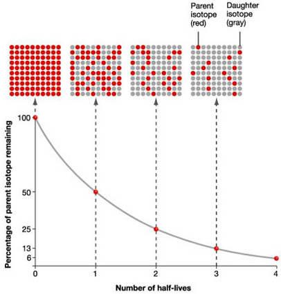 physics answers half life and radioactive dating
