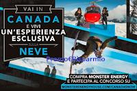 Logo Con Monster Energy puoi vincere un viaggio per due persone in Canada