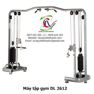 Máy tập gym DL 2612