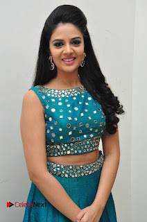 Sree Mukhi Pictures at Gentleman Audio Launch  0057.JPG