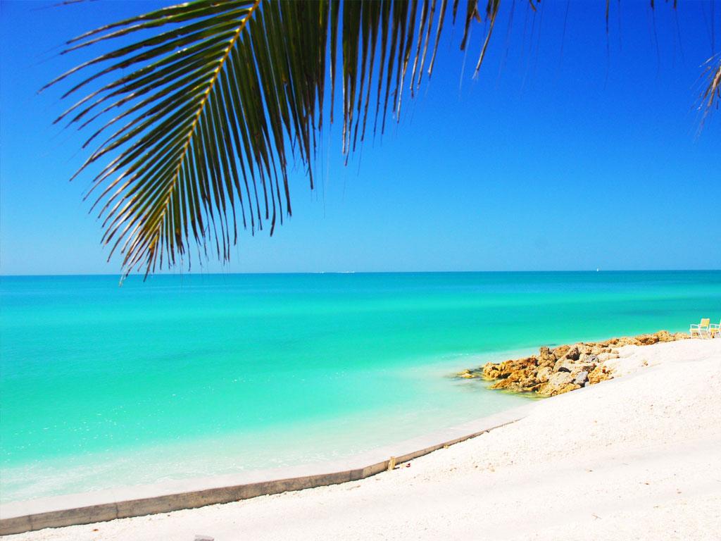 The Secret Of Best Place To Stay In Siesta Key Beach Fl Location