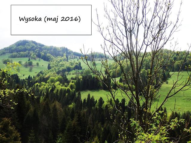 Wąwóz Homole i Wysoka (Wysokie Skałki) w Pieninach