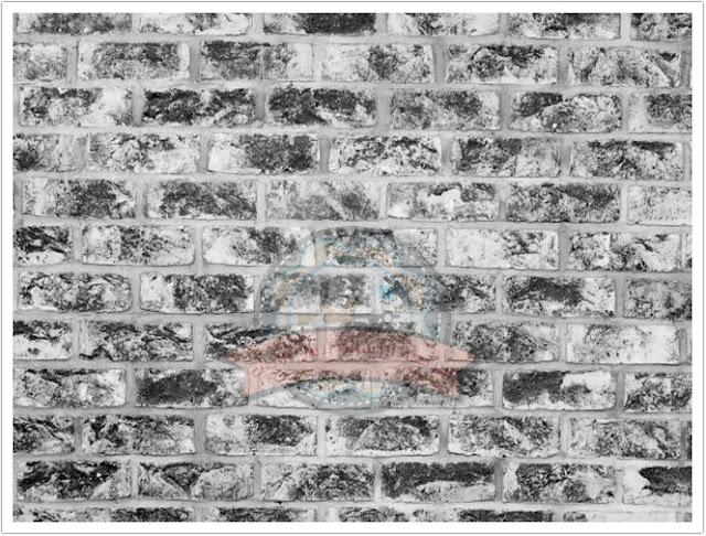 جدران البناء والواجهات الحجرية الخارجية