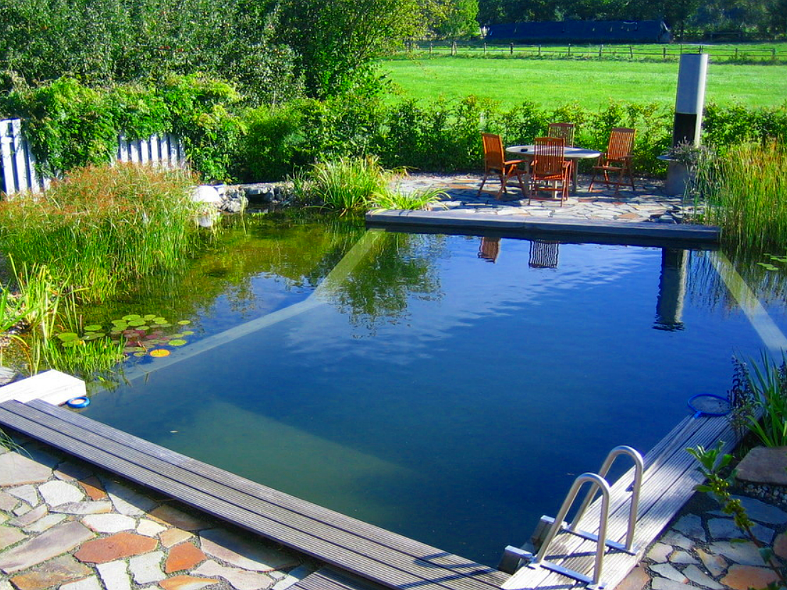 mein schwimmteich im garten juli 2012. Black Bedroom Furniture Sets. Home Design Ideas
