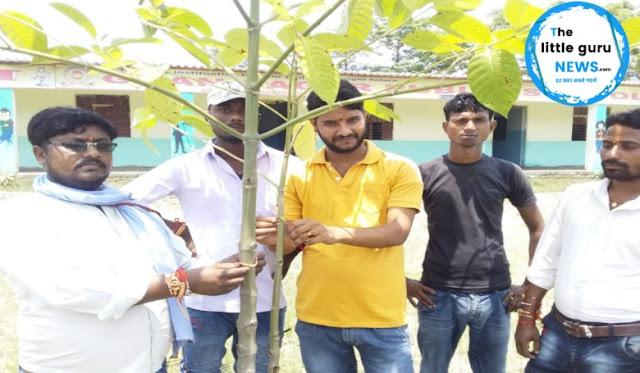 रक्षाबंधन के अवसर पर भाईयो के साथ-साथ पेड़ पौधों को भी बांधी गई राखी