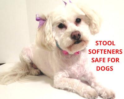 Dog Safe Stool softeners, Upset stomach in dogs, Dog upset bowel, Dog scooting,  Soften dogs stool