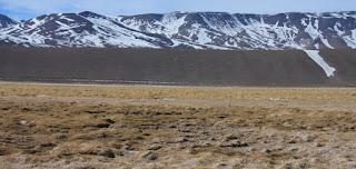 Santiago, 18 de marzo de 2016. La Superintendencia del Medio Ambiente (SMA) procedió a sancionar con la clausura definitiva de sus pozos de extracción de agua a la Sociedad Contractual Minera Maricunga S.A., minera que extrae oro en Tierra Amarilla, luego de comprobar que debido a su acción se han desecado al menos 70 hectáreas de humedales ubicados en el complejo lacustre Laguna del Negro Francisco y Laguna Santa Rosa, ubicados en la zona cordillerana de la Región de Atacama. Además, existe el riesgo inminente que la zona afectada se amplíe a otras 73 hectáreas.