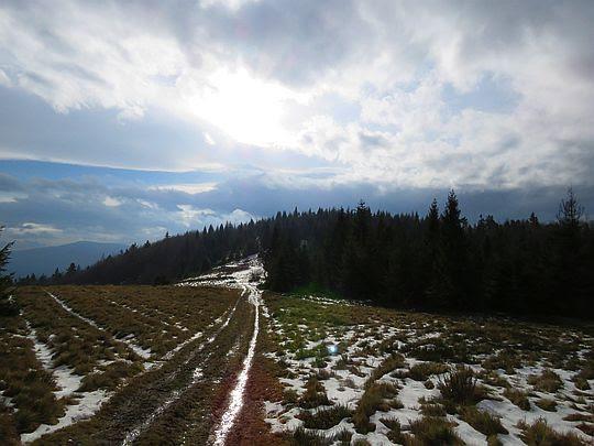 Szczyt Jasienia z Polany Skalne.