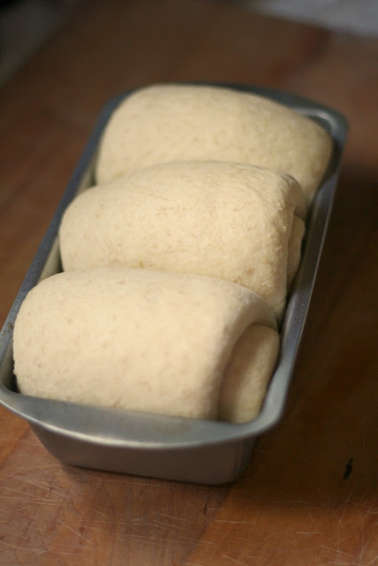 risen dough, ready for oven