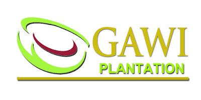 Lowongan Kerja Kaltim PT Gawi Plantation Tahun 2021