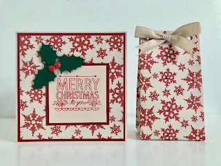 Hand made Christmas card with stamped greeting and die cut holly and matching gift bag.
