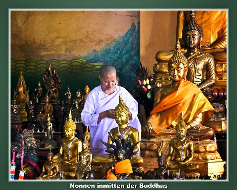 Buddhismus, Tempel, Wat, Hong Thong, Nonne, Mönch, Buddha