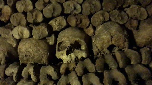 عالم الأحياء الشرعي مارك بينيك في سراديب الموتى في باريس.