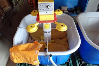 鉄コーティング湛水直播催芽機での浸種
