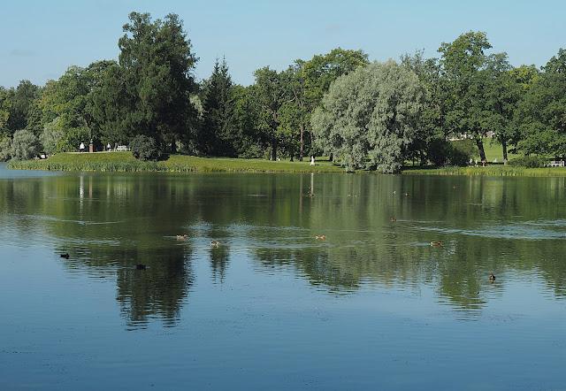 Царское Село – пруд в Екатерининском парке (Tsarskoye Selo - a pond in Catherine Park)