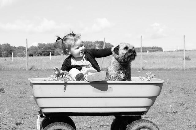 Come crescere un bambino insieme ad un cane