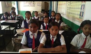 साफ्टवेयर कंपनी यालामनचिली ने संवारी जिले की बिरसा तहसील की दस शालाओं की तस्वीर।