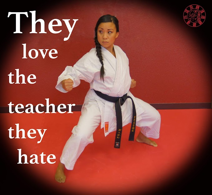 They Love the Teacher They Hate by Sensei Marcus Hinschberger