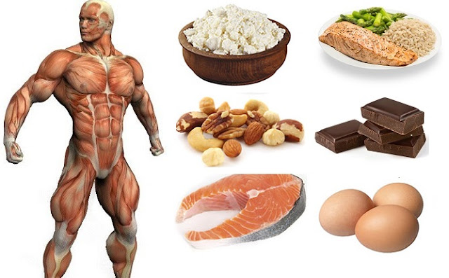 Conheça 8 alimentos para melhorar nos seus ganhos musculares