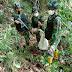 Anggota Satgas Yonif 144/JY Menemukan Trenggiling  Jalur Non Prosedural di Perbatasan