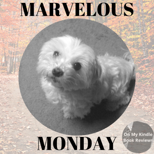 Marvelous Monday with Lexi: November 5th Edition!