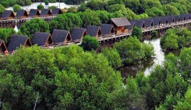 taman magrove salah satu taman rumah apung deret yang ada di jakarta