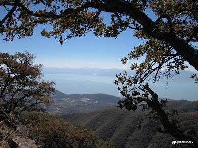 Lago de Chapala desde la Sierra de San Juan Cosalá