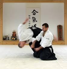 aikido training
