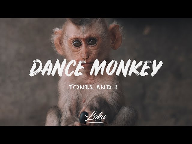 Tones and I - Dance Monkey Lyrics | Bright Lyrics